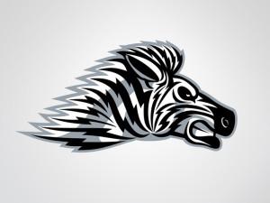 Zebra - © Steph Doyle